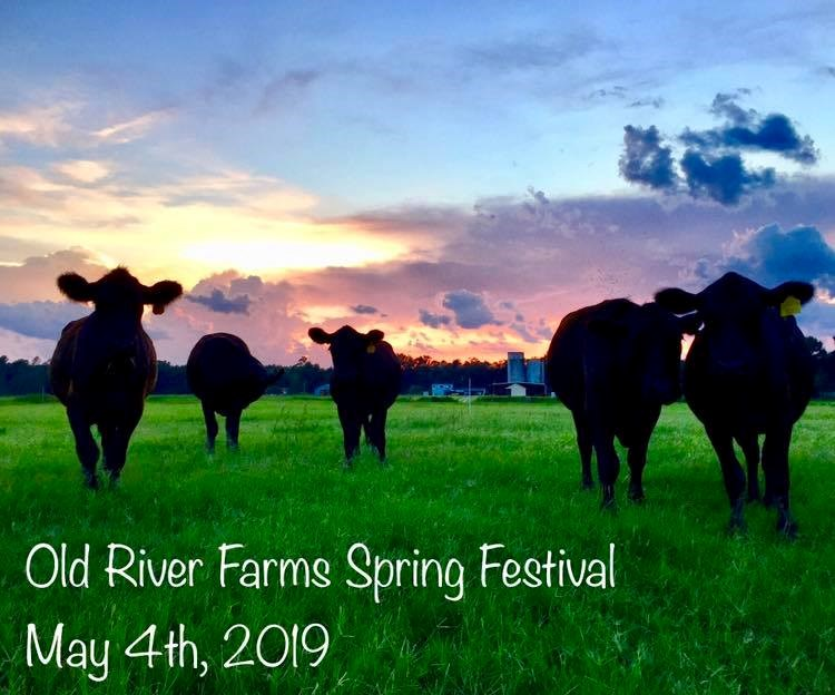 Old River Farm's Spring Fest