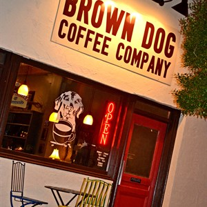 Brown Dog Coffee.jpg